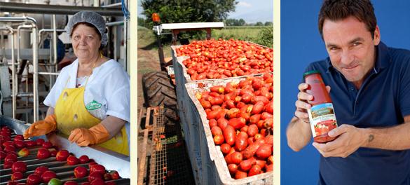 La Bio Idea Tomaten & Sauzen